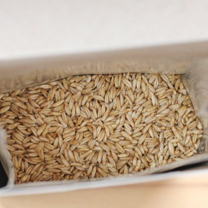 Inside a box of sprouted oats