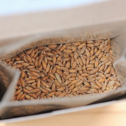 Inside a box of organic sprouted farro